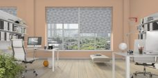 Three Bonsai Fig Roller Blinds set in a study