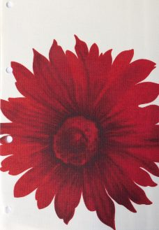 Camilla Rose- The fabric has a light cream background with large red/dark red flowers