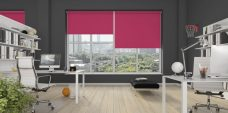 Three Palette Fuschia Roller Blinds in an office