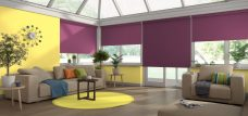 Four Palette Grape Roller Blinds in a conservatory