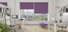 Three Palette Iris Roller Blinds in an office