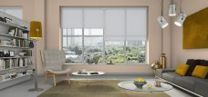 Three Palette Iron Roller Blinds in an office