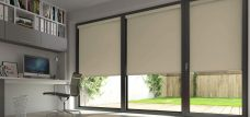Circus Creme Brulee Roller Blinds in an office