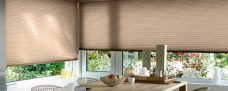 Two Duette-64mm-duo-tone-choclat blinds-full