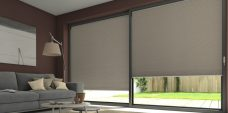 Two Duette Elephant Blackout Blinds