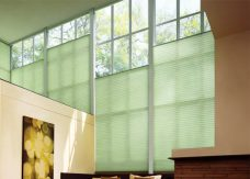 Duette-fixe 25 mm-duo-tone-wild-jungle blinds
