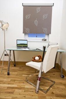 Lauren Stone Senses Blind in an office