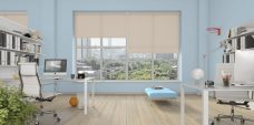 Three Rianna Magnolia blinds in an office