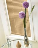 Venetian Blind 7903 25 mm textured set in a recess window