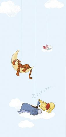 Velux 4610-blackout-Disney-Winnie-the-pooh-1 blinds fabric