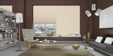 Radisson Beige Pleated Blinds in a study