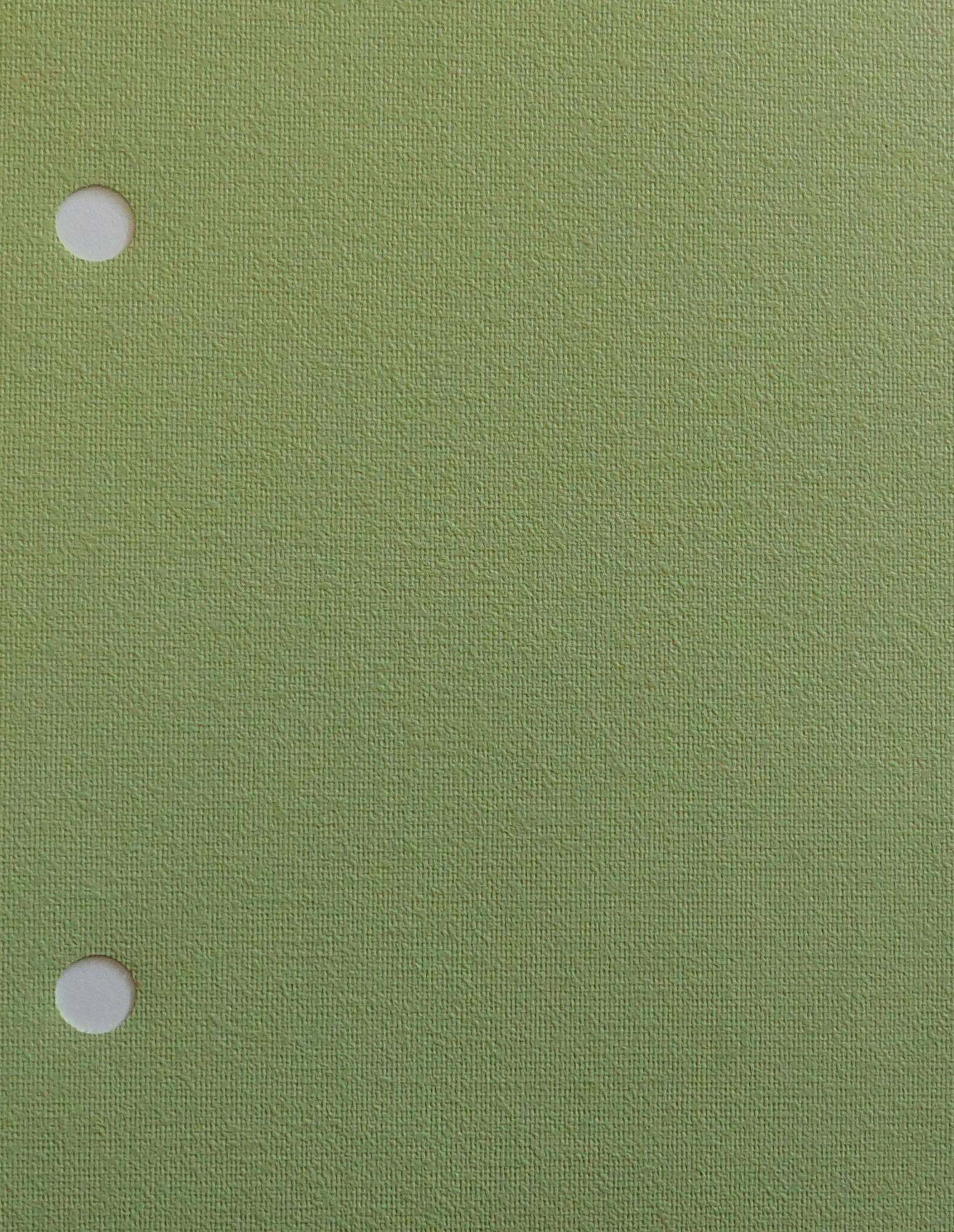 Rianna Spearmint Vertical Blinds A Green Fabric For