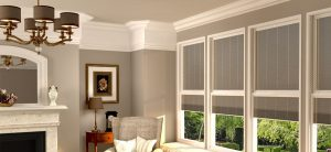 window blinds guide