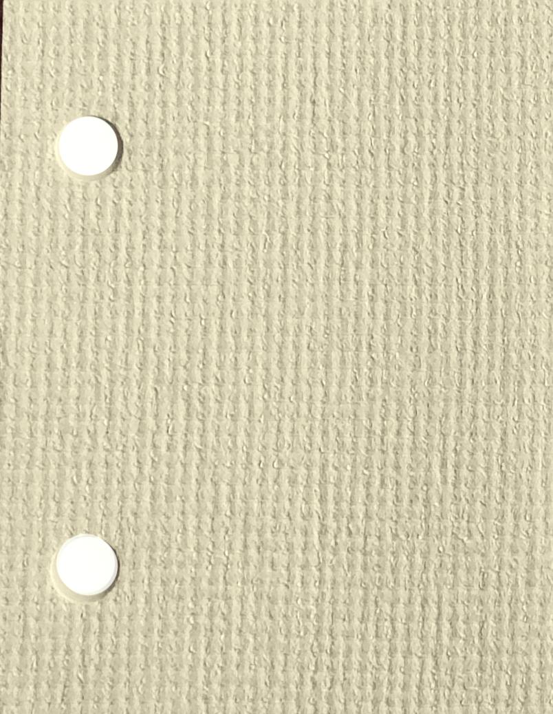 Guardian Cream blind fabric