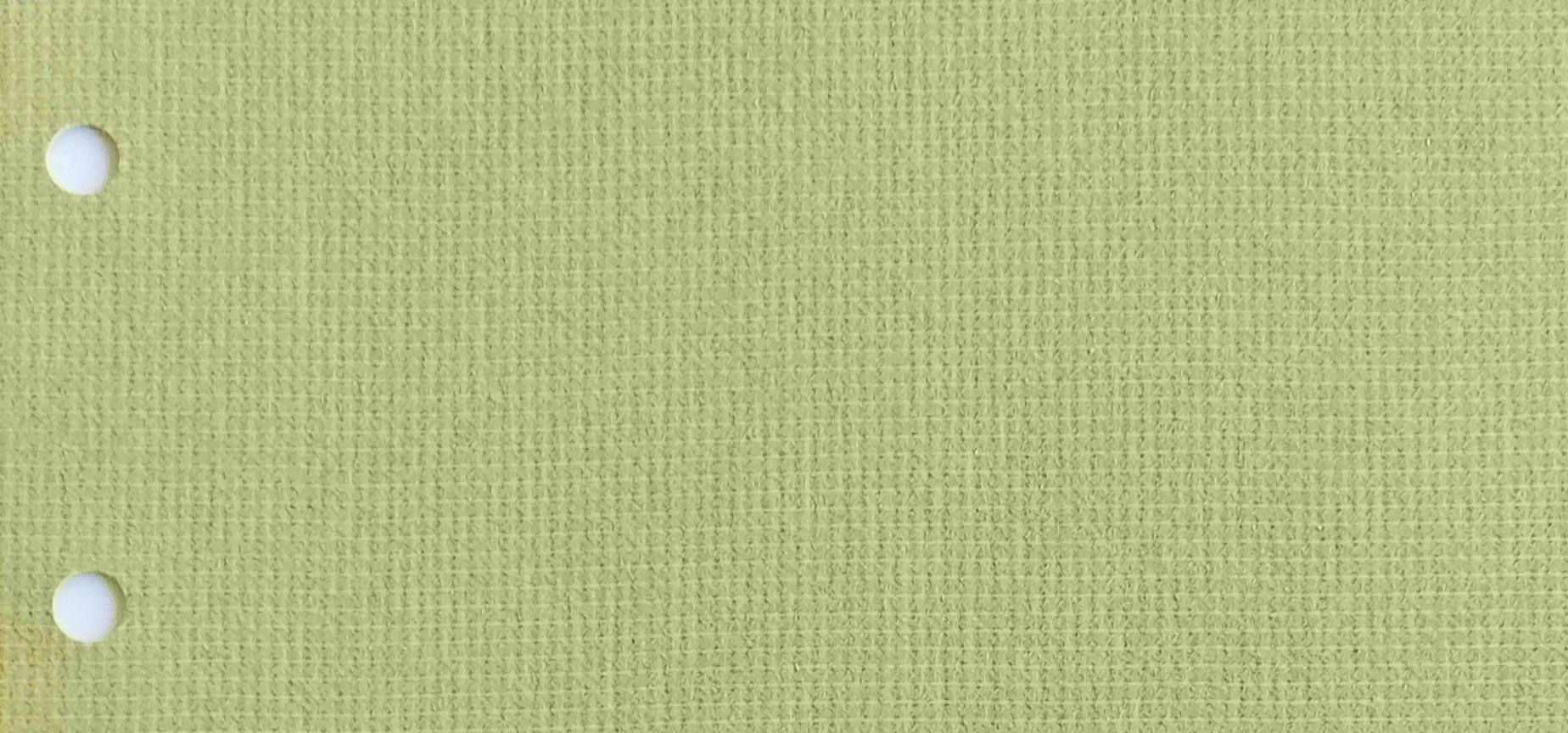 Guardian Fern Blind fabric