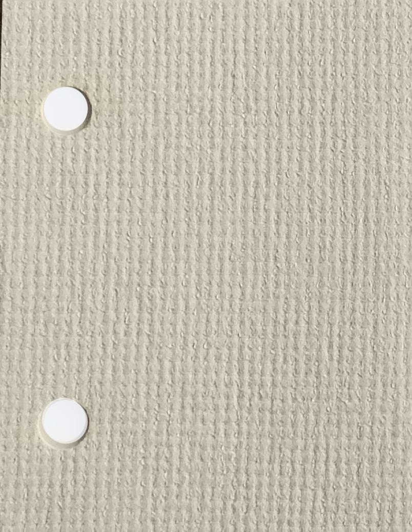 Guardian Parchment blinds fabric
