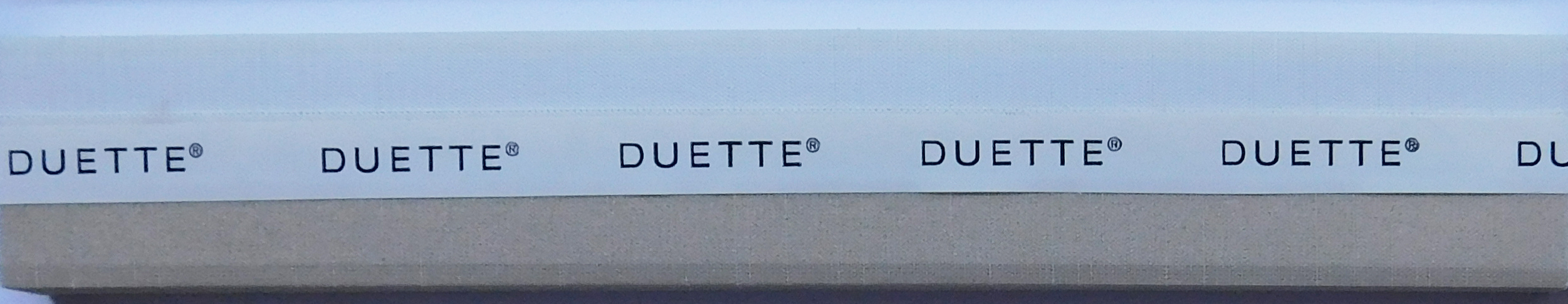 Royale Sponge Duette Blind Fabric sample